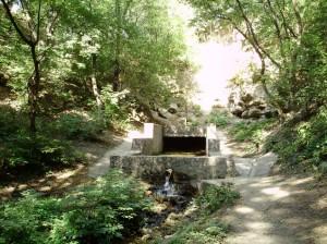 исток Кальмиуса