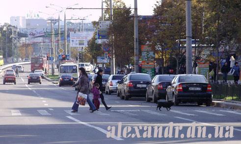 собака на переходе