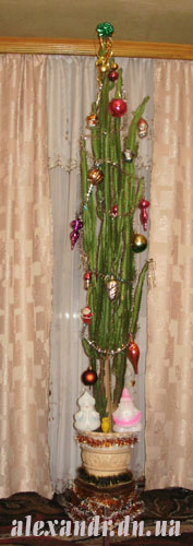 елка-кактус