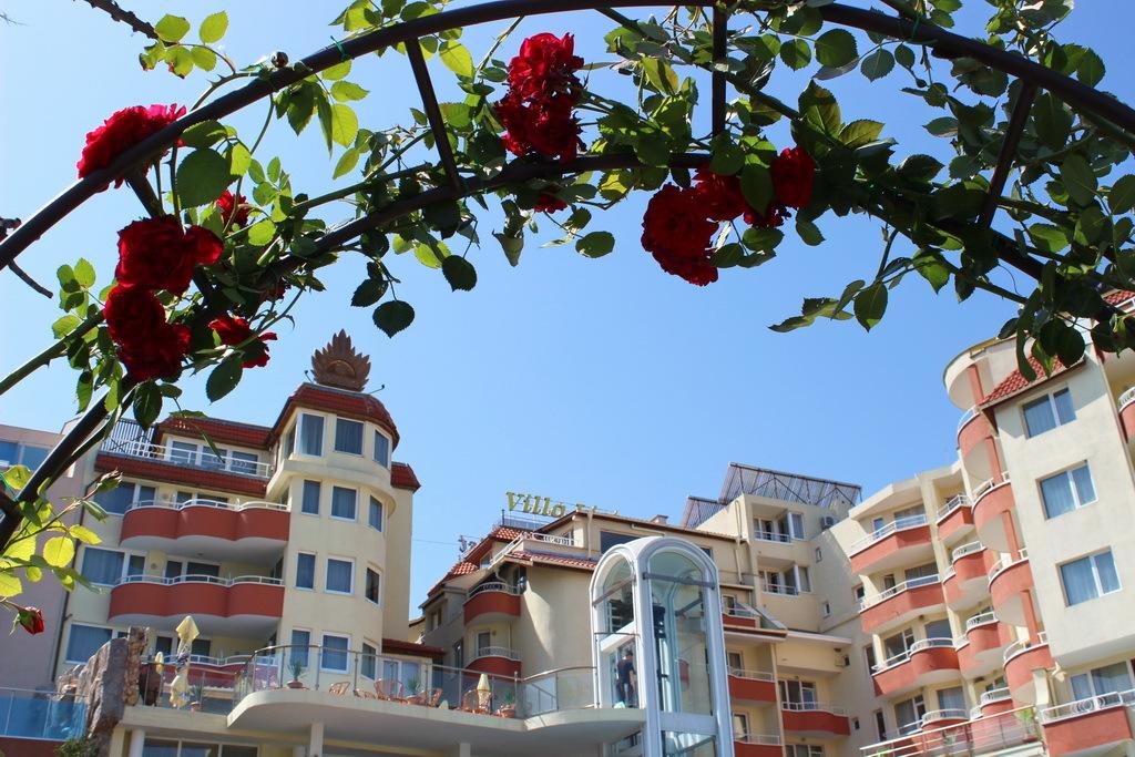 Романтическая арка из роз в Новом городе.